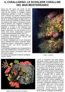 Articolo Coralligeno