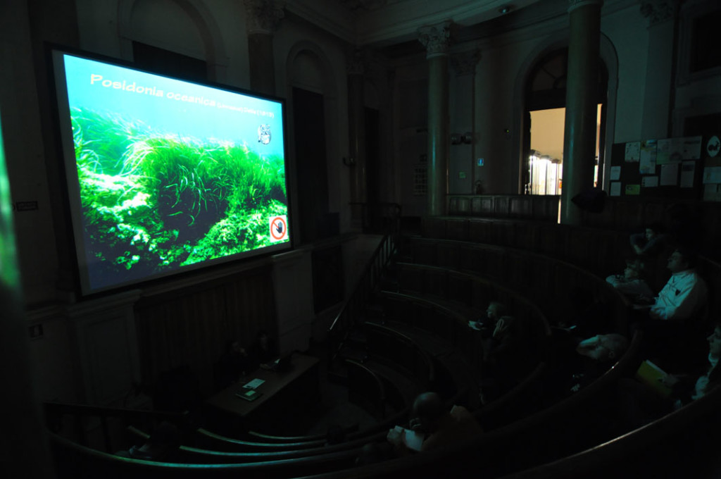 Aula ad anfiteatro del Museo