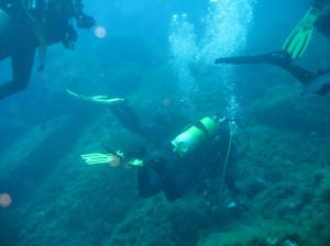 Scoglio del Raviolo (Portofino Promontory) 117