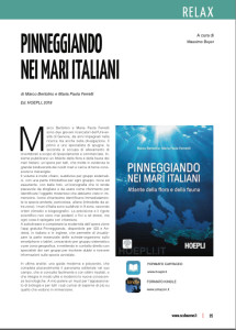 articolo-scubazone